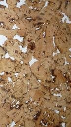 СКИДКА 15% Настенная пробка Corksribas Condor White