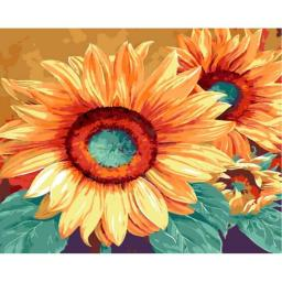 Раскраска по номерам Подсолнухи Марианны Брум, 40x50, Menglei