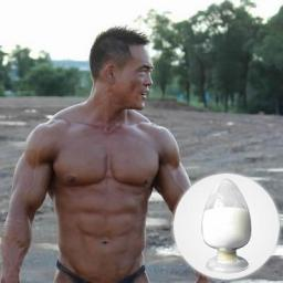 Methenolone Acetate Muscle Growth Anabolic Steroids CAS NO.434-05-9
