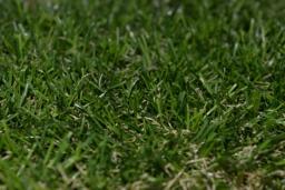 Искусственная трава арт. 30