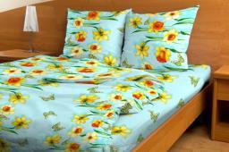 Комплект постельного белья Весенний денек (1)