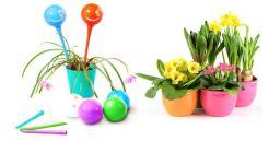 Plant Genie (Авто полив комнатных растений)