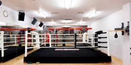 Ринг боксерский на подиуме