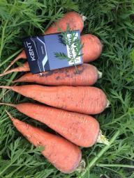 Морковь столовая оптом оптом в Кемерово