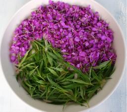Иван-чай (Алтайский), 500 гр