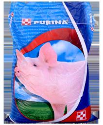 Комбикорм Purina для свиней