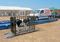 Монтаж животноводческих весов