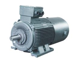 Обычный трехфазный асинхронный двигатель с преобразованием частотой из Китая