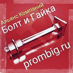 Фундаментный болт с анкерной плитой тип 2.1 м48х1400 сталь 3сп2 ГОСТ 24379.1-2012