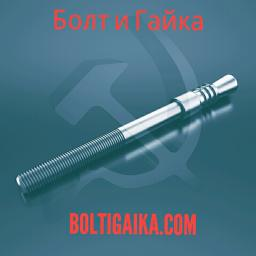 Фундаментный болт с коническим концом тип 6.3 м30х300 сталь 3сп2 ГОСТ 24379.1-2012