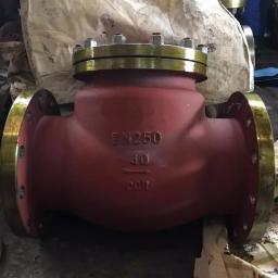 обратные клапаны стальные 19с53нж