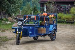 Электротрицикл GETPASSENGER 900W (Пассажирский Вариант) 32Ач