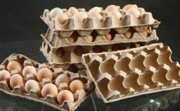 Линия по производству яичных лотков
