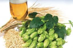 Набор для приготовления пива «Пшеничное Светлое»