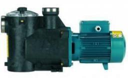 Насос для бассейна Calpeda с предварительным фильтром MPC-7