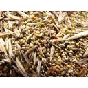 Семена многолетних трав и травосмеси для рекультивации