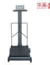 Реконструкция механических весов в электронные TCT