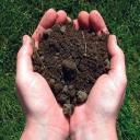 Грунт плодородный,купить грунт с доставкой,продажа грунта садового,садовая земля.