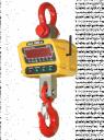 Весы крановые ВСК-10000ВД