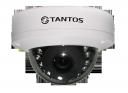 Уличная купольная антивандальная IP камера TSi-Dle23FP (2.8)