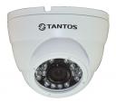 Антивандальная уличная купольная IP камера TSi-Dle1F (3.6)