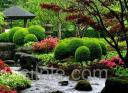 Создание японских садов
