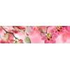 Кухонный фартук 2440х610х3 мм Орхидея № 3 розовая