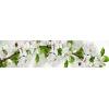 Кухонный фартук 2440х610х3 мм Цветущий сад № 2 белый