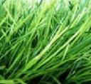 Трава искусственная для футбола, 8800 dtex 60мм