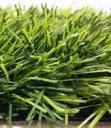 Трава искусственная для футбола двухцветная 11000 dtex