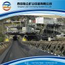 Steel Cord Bucket Elevator Belt|China conveyor belt manufacturers
