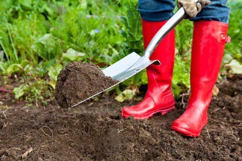 Земля плодородная для огорода