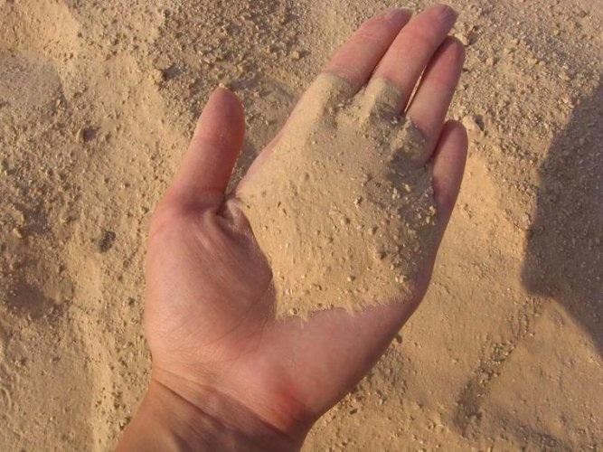 От чего может пойти песок из почки
