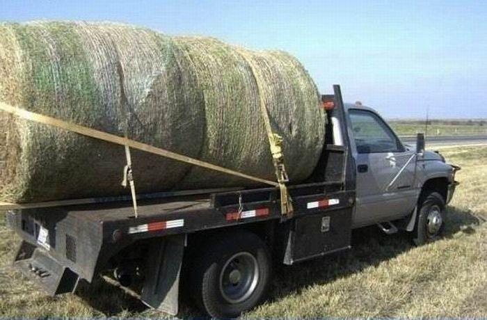 то, Могут ли фермеры продавать с машины торопился, сказал