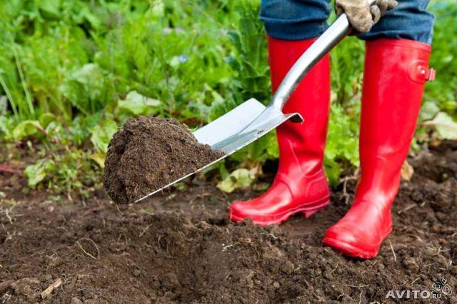 где купить хорошую землю в огород в екатеринбурге гармонии