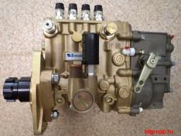ТНВД Motorpal PP4M9P1g