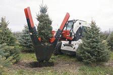 Пересадчики деревьев