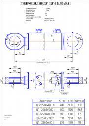 Гидроцилиндр стрелы, ковша цг-125.80х1100.11 ек-18, ет-18