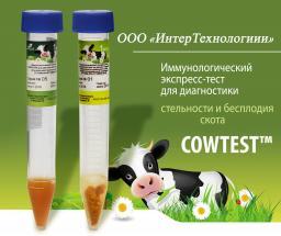 Тест на стельность Cowtest