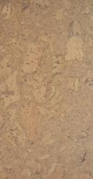 Пробковый пол клеевой Wicanders P906 Eden