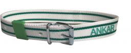 Ошейник маркировочный для КРС ANKAR, бело-зеленый, пряжка