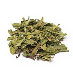 Кипрей (Иван-чай) лист