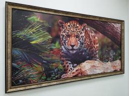 Картина - Постер (Леопард). Размер: 650x1270 мм.