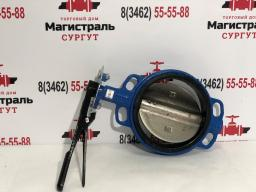 Затвор дисковый поворотный, Ру16 300