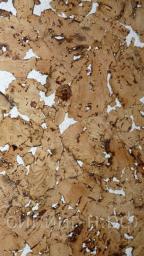 Пробковое покрытие для стен Corksribas Condor White