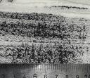 Мраморный песок фракция 0,2-0,5 в мешках