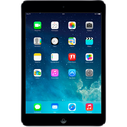 Apple iPad mini with Retina display 64Gb Wi-Fi Space Gray (космический серый) :
